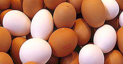 Kanadische Provinzen Durch Die Anzahl Der Produzierten Eier
