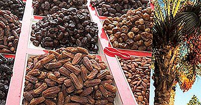 Date Di Crescita Dei Paesi Principali (Frutta Fresca Di Palma Da Datteri)