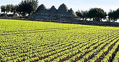 Principales Países Europeos Para La Agricultura Ecológica