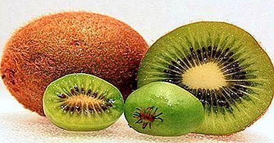 Principales Países Productores De Kiwi En El Mundo