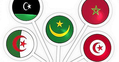 O Que É A União Do Magrebe Árabe?
