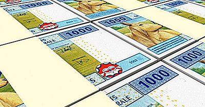 Hvad Er Valutaen I Kamerun?