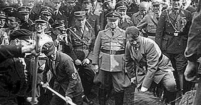 Qu'Est-Ce Qu'Une Économie Fasciste?