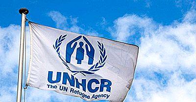 Quels Pays Font Le Plus Don À L'Agence Des Réfugiés?