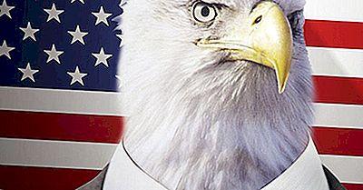 Warum Die Wirtschaft Der Vereinigten Staaten Die Stärkste Der Welt Bleiben Wird