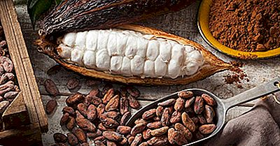 Cele Mai Mari Exportatoare De Cacao Din Lume