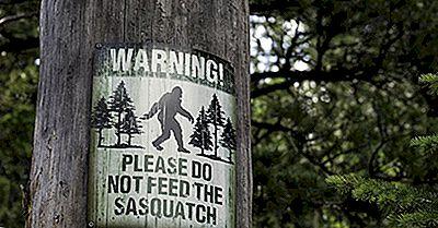 Bigfoot Și Alte Povești De Folclor De Pădure