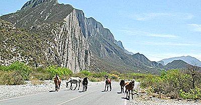 Los Parques Nacionales Más Grandes De México