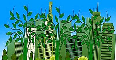 Das Konzept Der Ökoeffizienz: Warum Ist Es So Wichtig Für Die Moderne Welt?