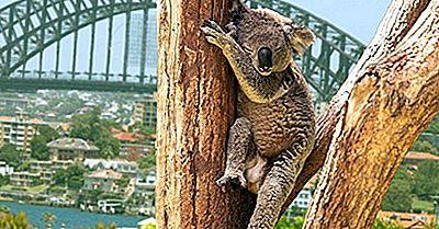 Ökologische Regionen Von Australien