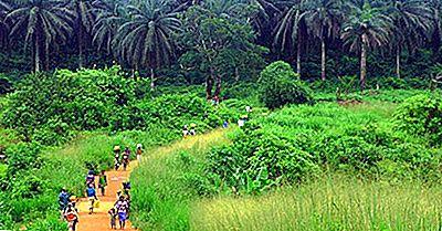 Økologiske Regioner Av Benin