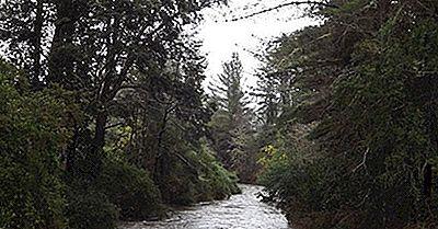 Ökologische Regionen Von Chile