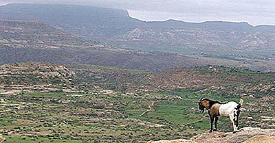 Regioni Ecologiche Dell'Etiopia