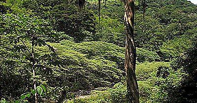 Regiões Ecológicas De Honduras