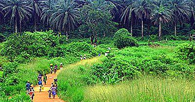 Régions Écologiques Du Nigeria