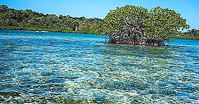 Regioni Ecologiche Di Panama