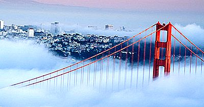 Die Foggiest Orte Auf Der Erde
