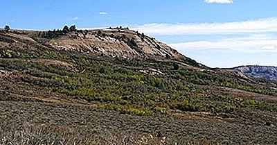 Fossil Butte National Monument - Unikke Steder I Nordamerika