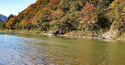 Cuatro Grandes Enfermedades De La Contaminación De Japón