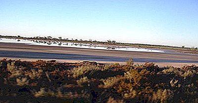 Salinità Del Suolo Alto: Un Importante Problema Ambientale In Australia
