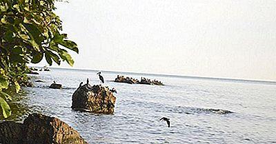 Quão Grande É O Lago Victoria?