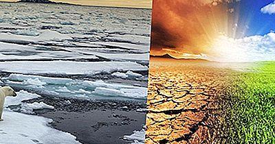 In Che Modo I Cambiamenti Climatici Influenzano I Diversi Ecosistemi Della Terra?