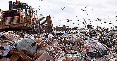 Wie Lange Dauert Es, Bis Müll Zerlegt Wird?