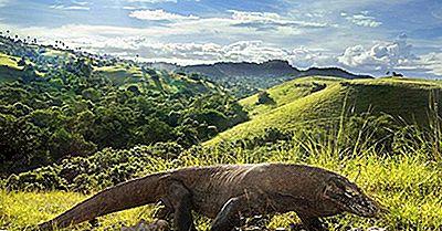 Parcurile Naționale Ale Indoneziei