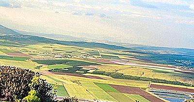 Valle De Jezreel: The Breadbasket Of Israel