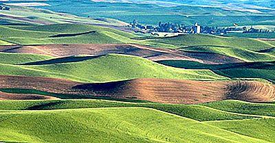 Loess Soil E Ground Fertility