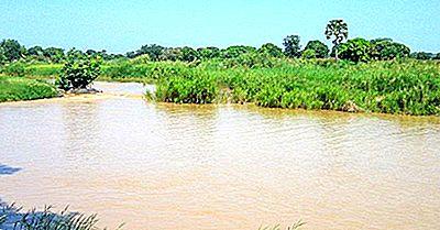 Cele Mai Lungi Râuri Din Nigeria