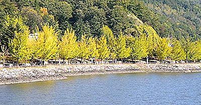 Los Ríos Más Largos En Corea Del Sur
