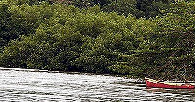 Parques Nacionales Y Áreas Protegidas En Jamaica