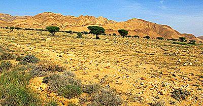 Les Parcs Nationaux De Tunisie