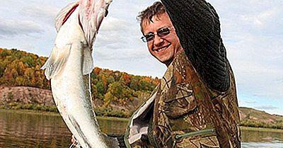 Inheemse Vissoorten Van Rusland