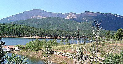 Cele Mai Vechi Păduri Naționale Din S.U.A.