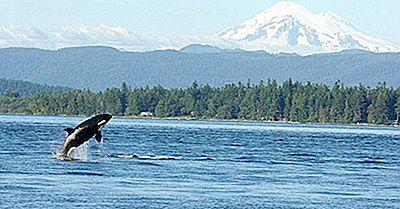 Puget Sound, Vereinigte Staaten