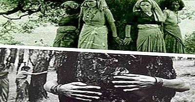 Rischiare La Vita Per Salvare Gli Alberi: Il Chipko Movement Of India, Un'Ispirazione Per Il Mondo