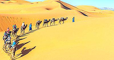 Le Sei Ecoregioni Del Deserto Del Sahara