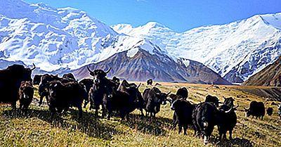 Høyeste Fjell I Tadsjikistan