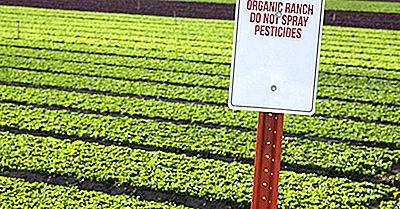 Principales Países De América Del Norte Y Del Sur Para La Agricultura Orgánica