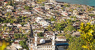 Les Oiseaux Uniques Trouvés Aux Comores
