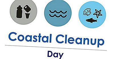 Ce Și Când Este Ziua Internațională De Curățare Coastă?
