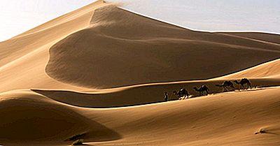 ¿Qué Animales Viven En El Desierto Del Sahara?