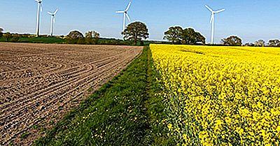 ¿Cuáles Son Los Diferentes Tipos De Prácticas Agrícolas Sostenibles?