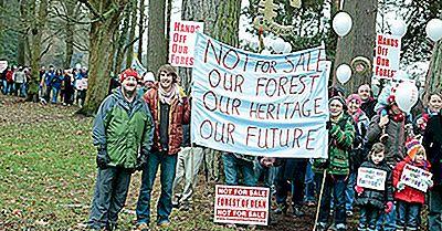 Que S'Est-Il Passé Pendant La Campagne «Au Large De Notre Forêt» Au Royaume-Uni?