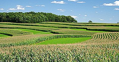 ¿Qué Es La Agricultura De Contorno?
