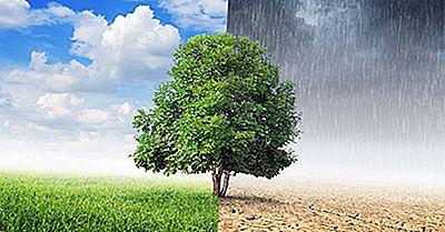 Qual È La Differenza Tra Clima E Clima?