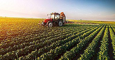 Qual É O Impacto Ambiental Da Agricultura?