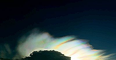 Cos'È Un Arcobaleno Di Fuoco?